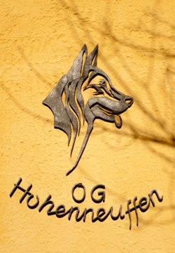 SV OG Hohenneuffen